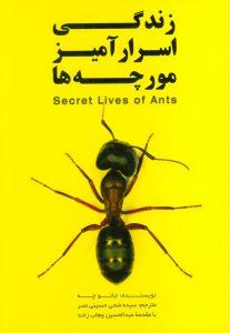 گذری بر زندگی اسرار آمیز مورچهها