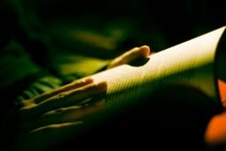 دارویی برای درمان افسردگی/ نظر نویسندگان درباره مطالعه کتاب