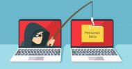 فیشینگهای اطلاعاتی، سرقتهای اینترنتی/ دزدی در عصر دیجیتال