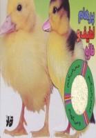 کتاب حسی اردک (پرهام لطیف و نازه)،(گلاسه)