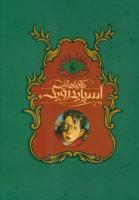 مجموعه ماجراهای اسپایدرویک (5جلدی،باقاب)