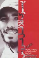 پسرک فلافل فروش (زندگینامه و خاطرات بسیجی مدافع حرم طلبه شهید محمدهادی ذوالفقاری)
