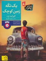 یک تکه زمین کوچک (رمان نوجوان208)