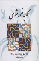 کلید فهم مثنوی (شناخت دیدگاه های مولانا)