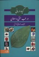 گیاه درمانی در طب سنتی و اسلامی