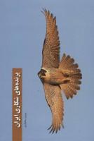 پرنده های شکاری ایران (گلاسه)