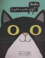 مومو،گربه ی عجیب و غریب (گلاسه)