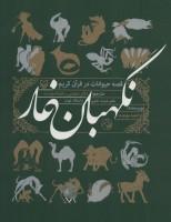 نگهبان غار (قصه حیوانات در قرآن کریم)