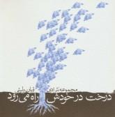 درخت در خودش راه می رود (مجموعه نثر ادبی)