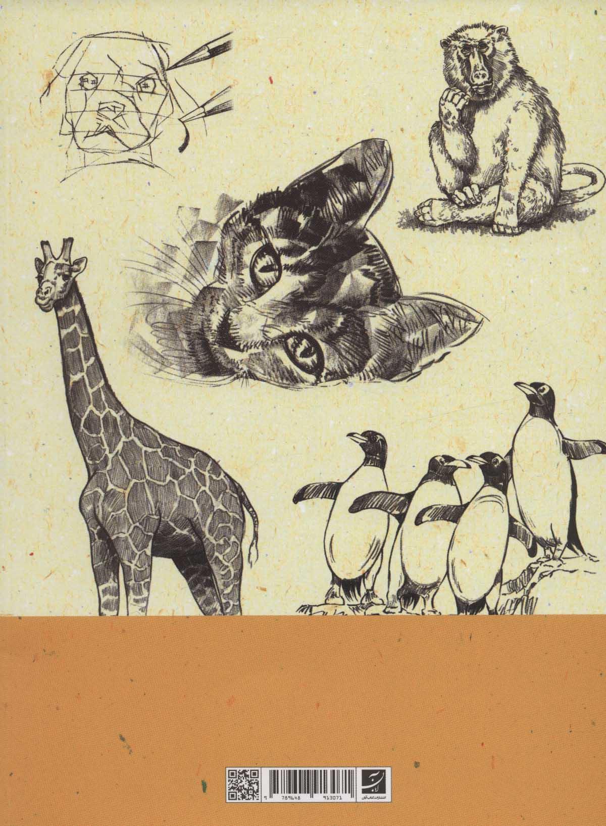 طراحی حیوانات