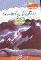 سرزمین سحرآمیز31 (در تاریکی پانجیباره)