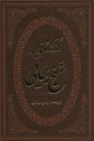 کشکول شیخ بهایی (ترمو،لب طلایی)