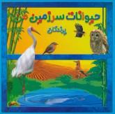 حیوانات سرزمین من (پرندگان)،(گلاسه)