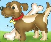 حیوانات را بشناسیم (سگ)،(گلاسه)