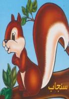 حیوانات را بشناسیم (سنجاب)،(گلاسه)