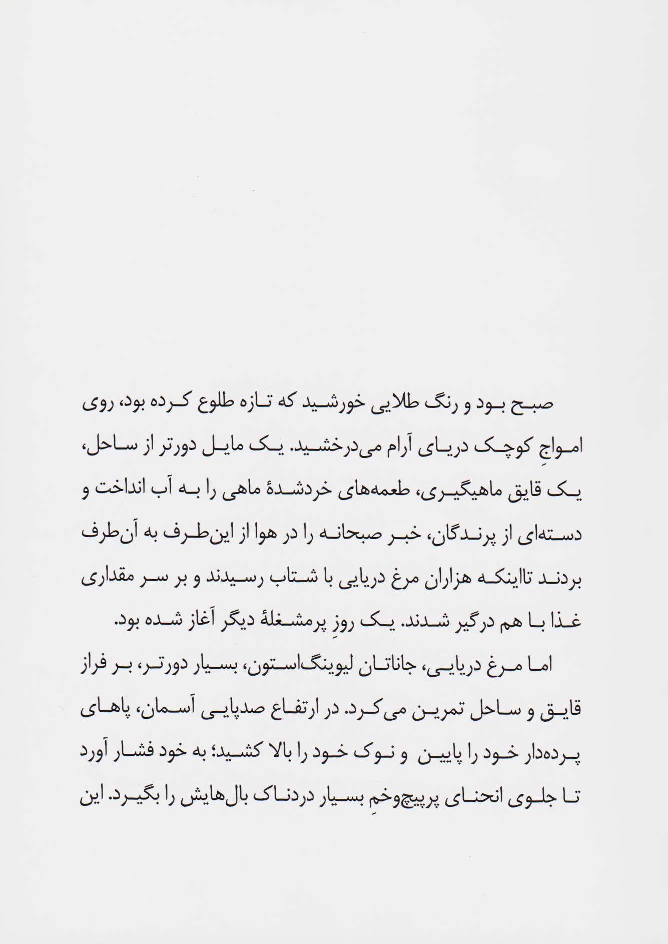 جاناتان مرغ دریایی (گلاسه)