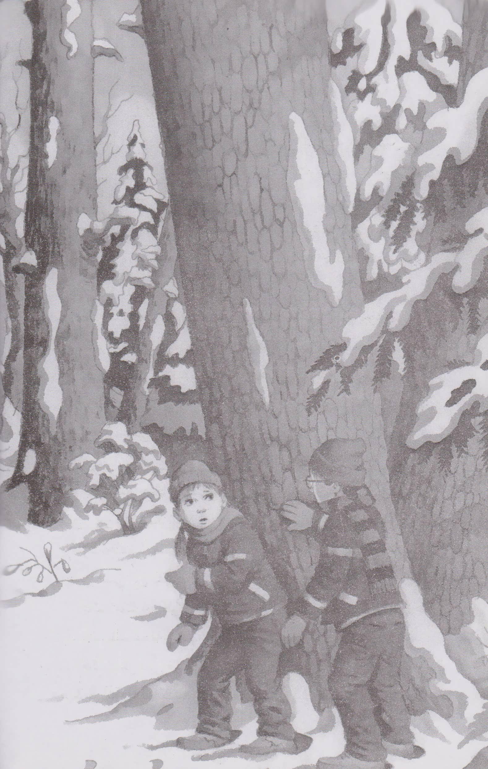 خانه درختی سحرآمیز32 (زمستان جادوگر یخ)