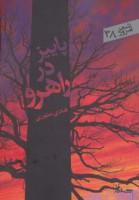 پاییز در راهرو (شعر امروز38)