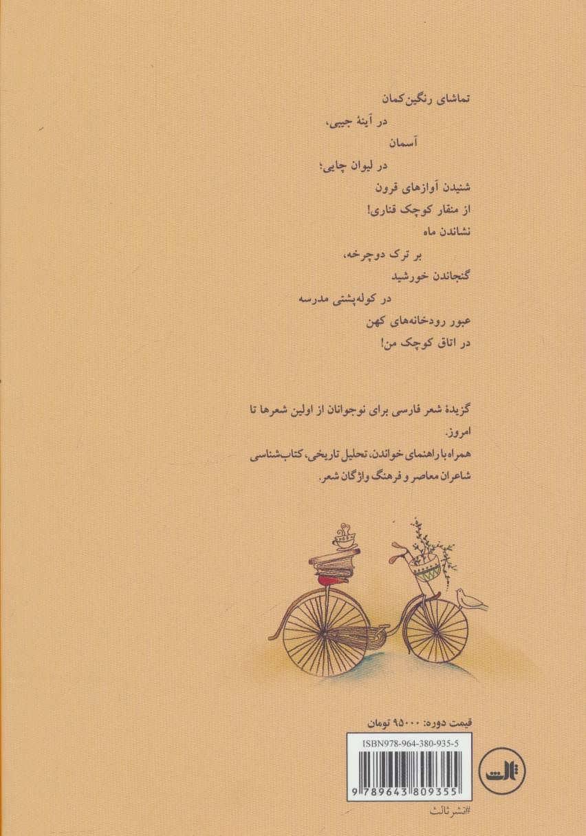 ماه بر ترک دوچرخه (گزیده شعر امروز برای نوجوانان از اولین شعرها تا امروز)،(5جلدی)