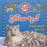 گربه سانان (گربه های خطرناک حیات وحش)،(گلاسه)