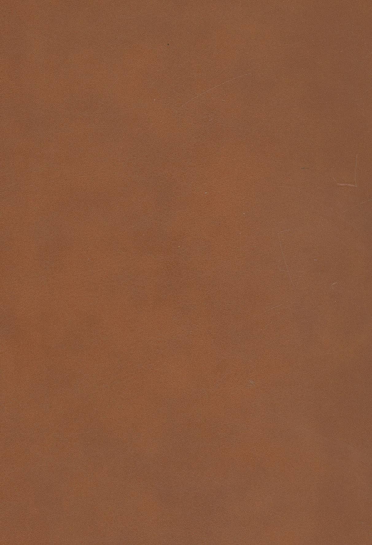 اوستا (دانشنامه ی ایران باستان)