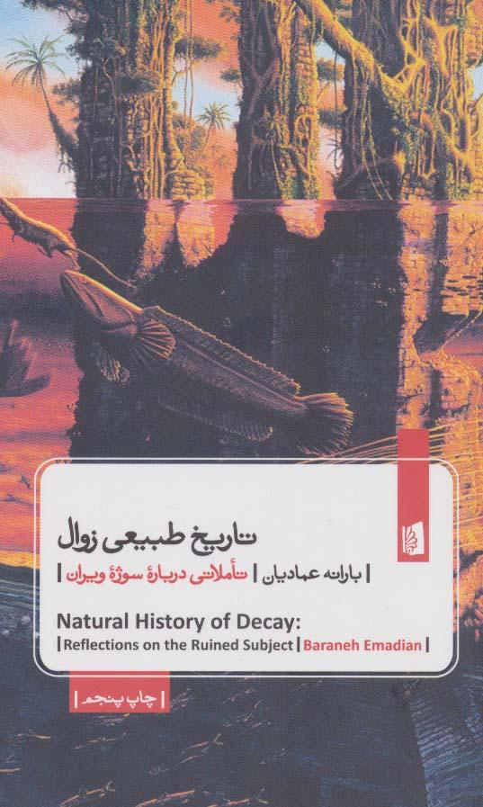 تاریخ طبیعی زوال (تاملاتی درباره سوژه ویران)