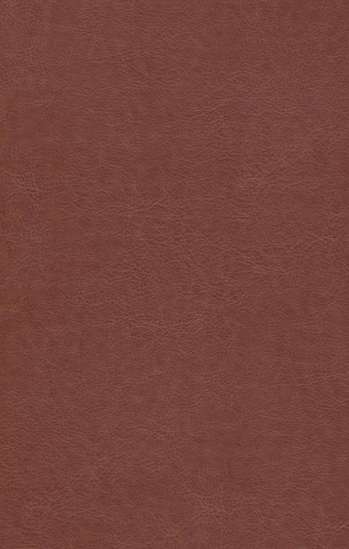 قرآن کریم (4رنگ،باقاب،ترمو،لیزری)