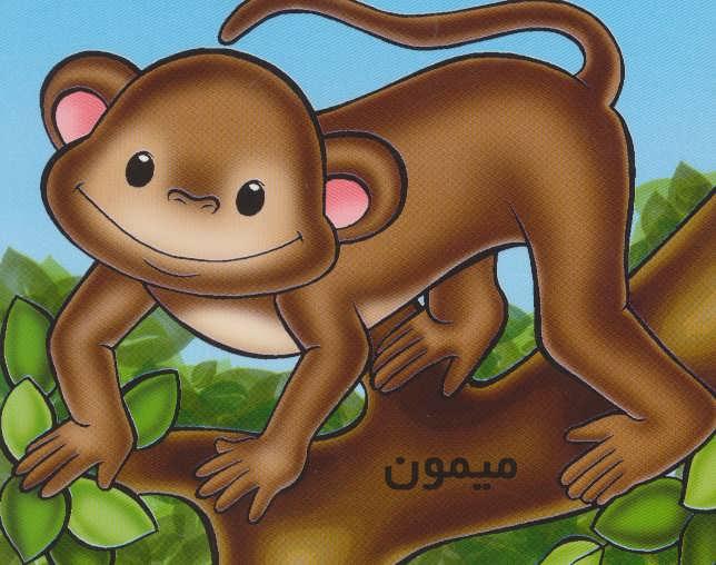 حیوانات را بشناسیم (میمون)،(گلاسه)