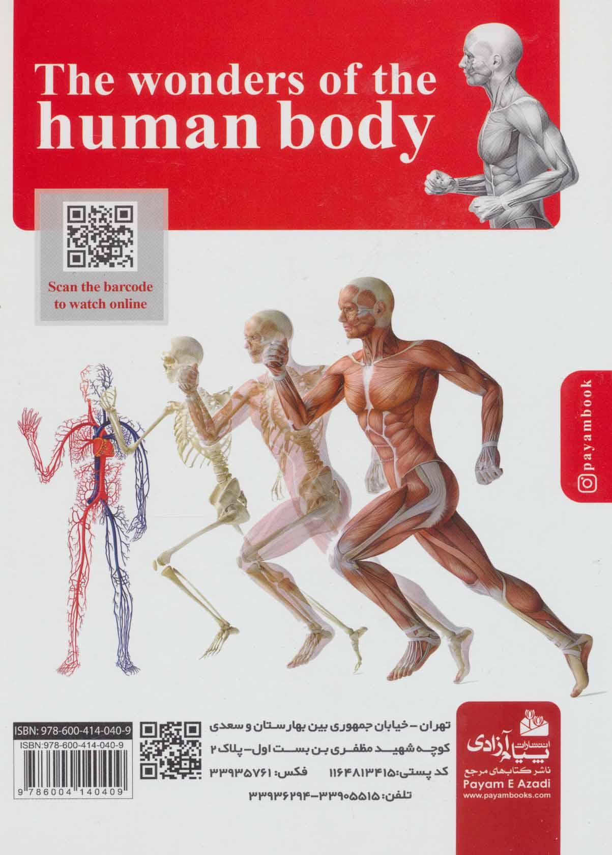 شگفتی های بدن انسان
