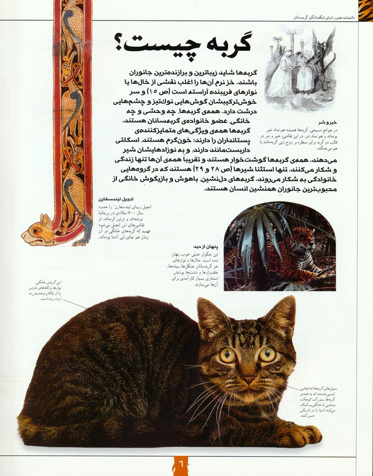 دانشنامه مصور دنیای شگفت انگیز گربه سانان (گلاسه)