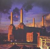 حیوانات (Pink Floyd،Animals)،(سی دی صوتی)