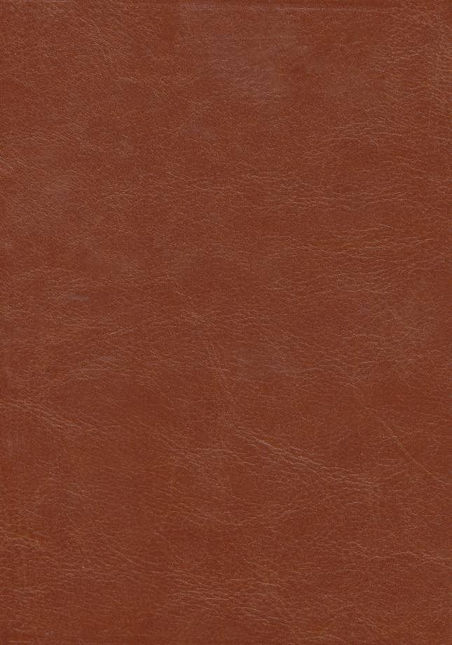 بوستان سعدی (گلاسه،چرم،لب طلایی)