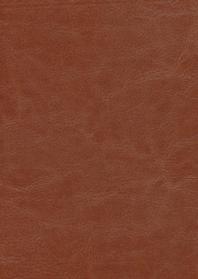 گلستان سعدی (گلاسه،چرم،لب طلایی)