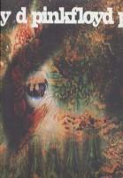 یک نعلبکی رمز و راز (Pink Floyd،a Saucerful Secrets)