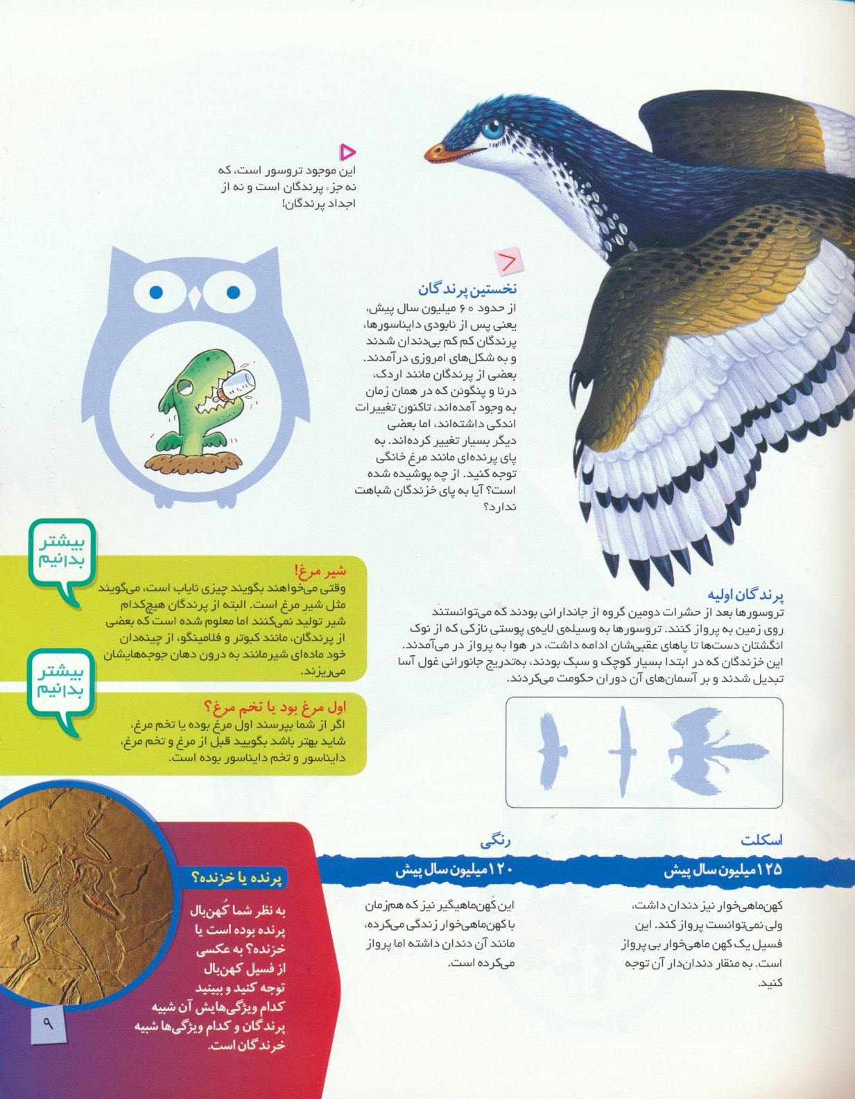 دانستنی های جانوران ایران و جهان (پرندگان)،(گلاسه)