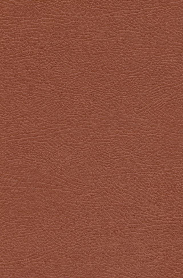 اودیسه (چرم،لب طلایی)
