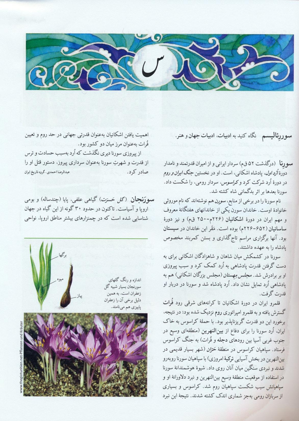 فرهنگنامه کودکان و نوجوانان17 (س-ش)