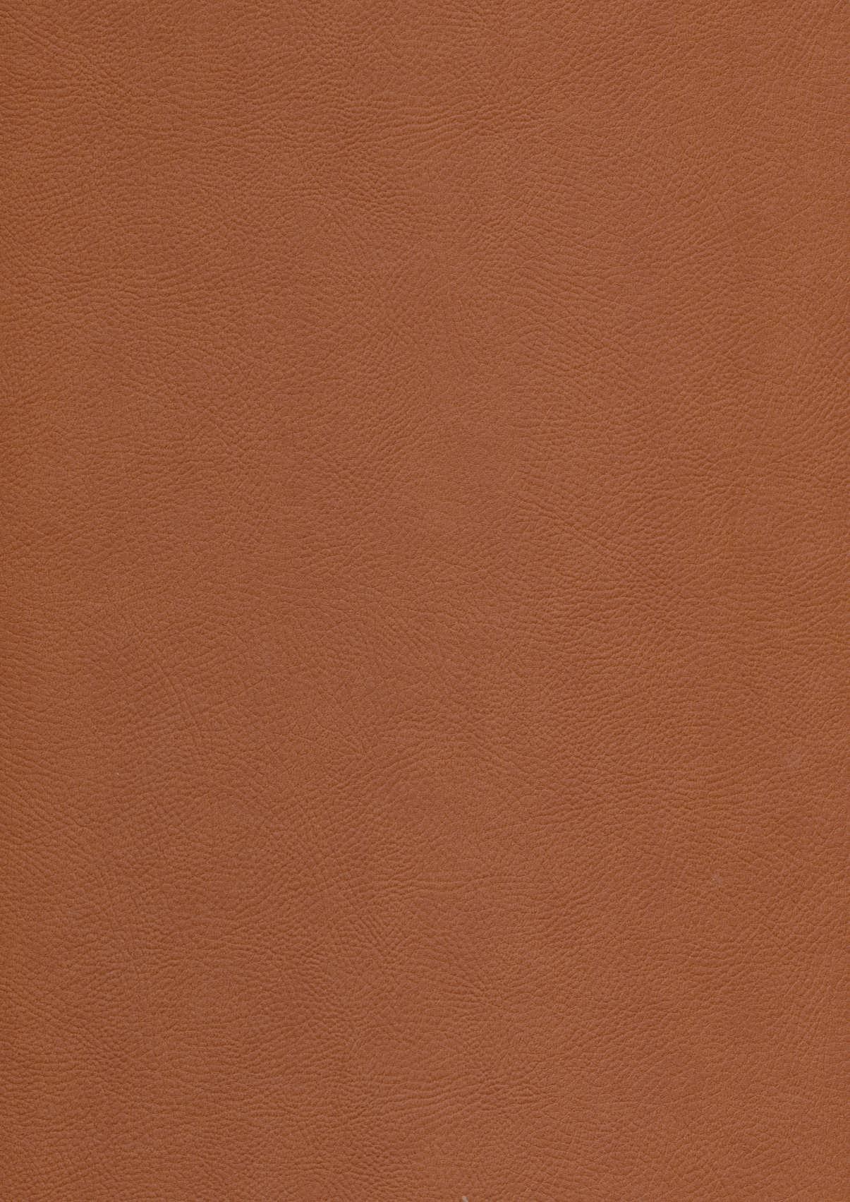 ساغر و ساقی (5رنگ،2زبانه،گلاسه،باجعبه،ترمو،لب طلایی)