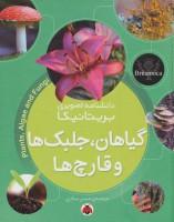دانشنامه تصویری بریتانیکا (گیاهان،جلبک ها و قارچ ها)،(گلاسه)