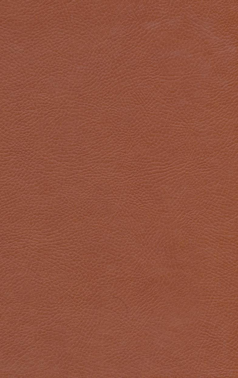 کلئوپاترا (چرم،لب طلایی)