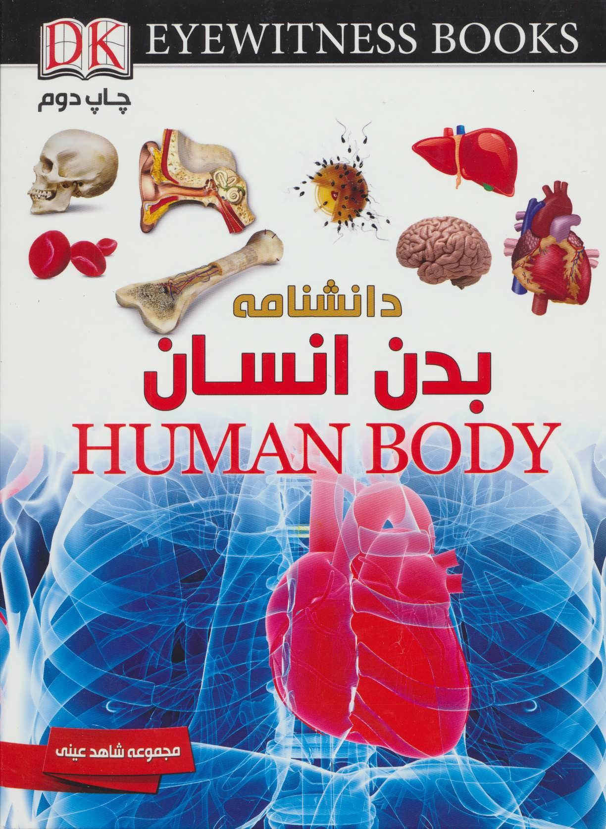 دانشنامه بدن انسان (شاهد عینی)،(گلاسه)