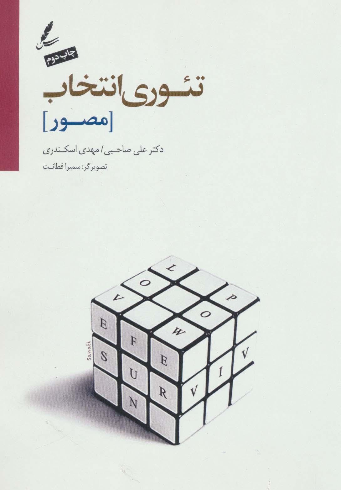 تئوری انتخاب (مصور)