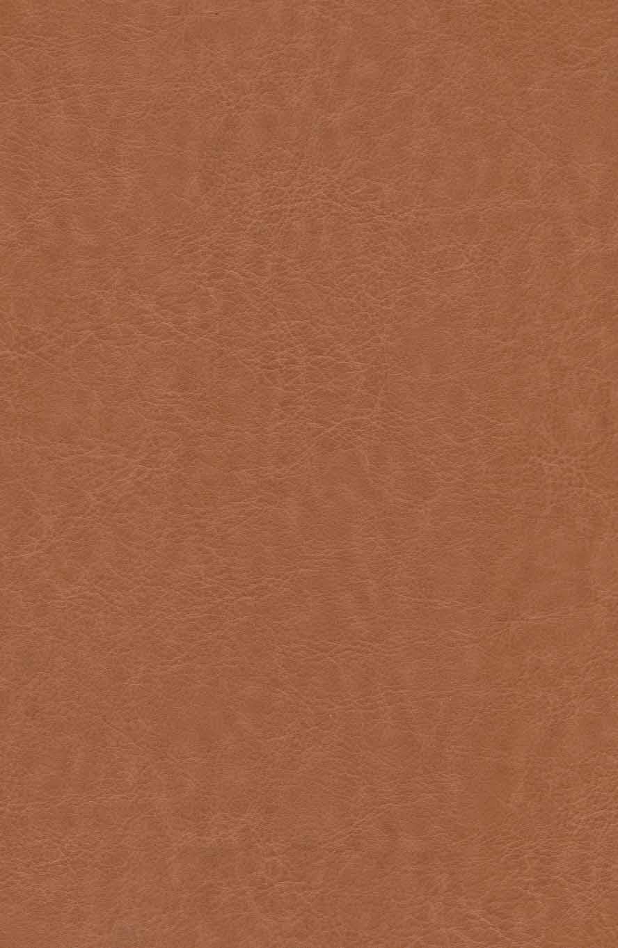 کلیات سعدی (باقاب،چرم)