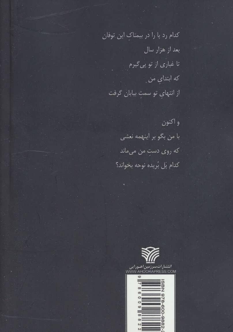 و نبض چارراه از تپش افتاد (شعر ایران31)