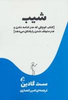 شیب (کتاب کوچکی که هنر ادامه دادن و هنر متوقف شدن را یادتان می دهد)