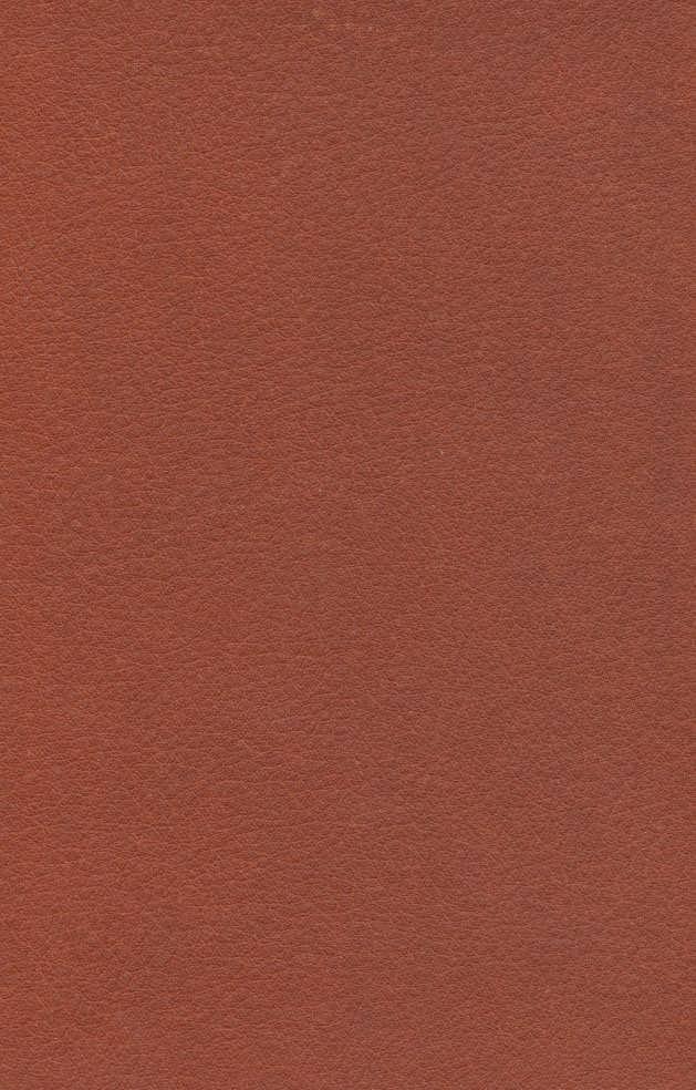 جاناتان مرغ دریایی (چرم،لب طلایی)