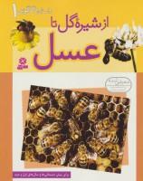 داستان دگرگونی 1 (از شیره گل تا عسل)،(گلاسه)