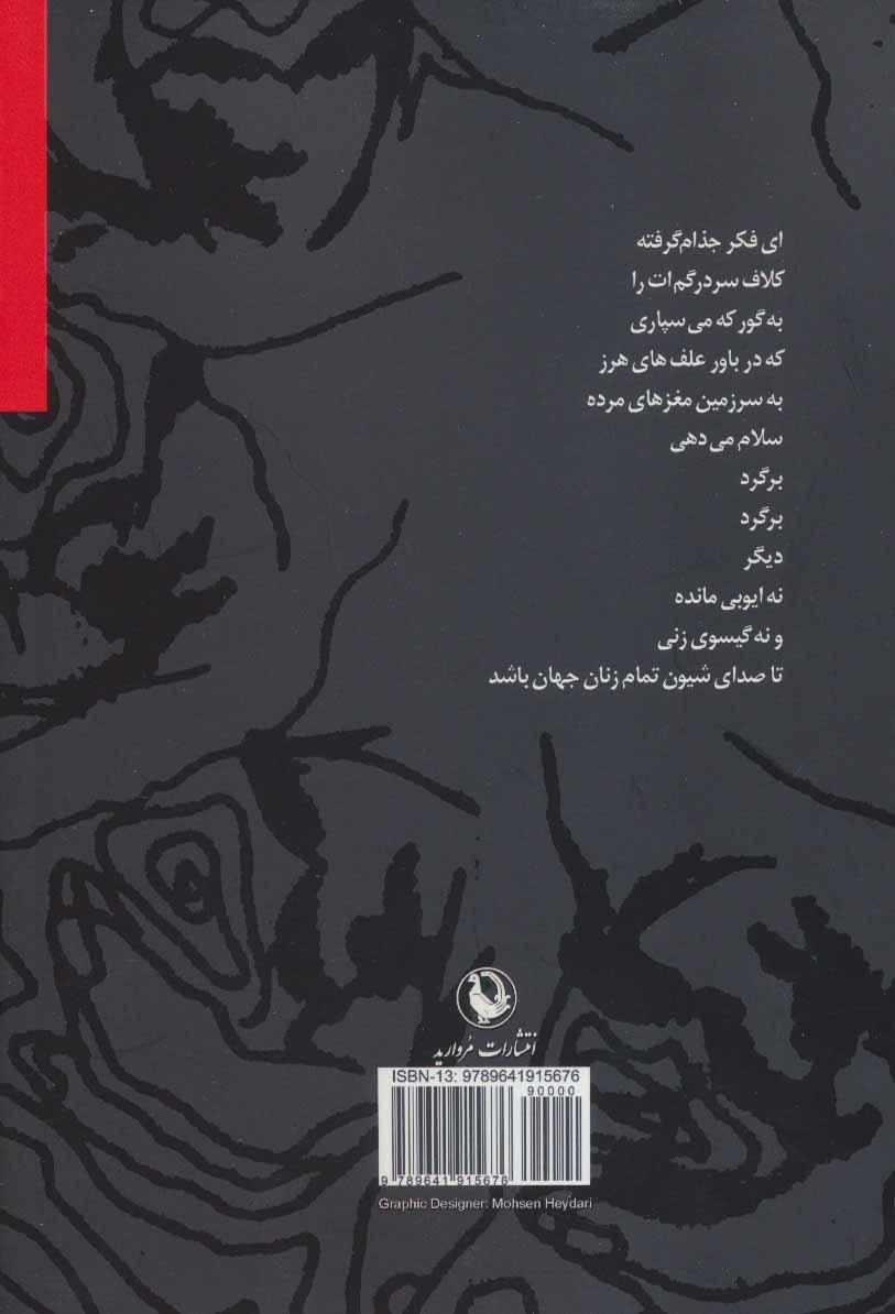 زنی میان دو تاریکی (مجموعه شعر)