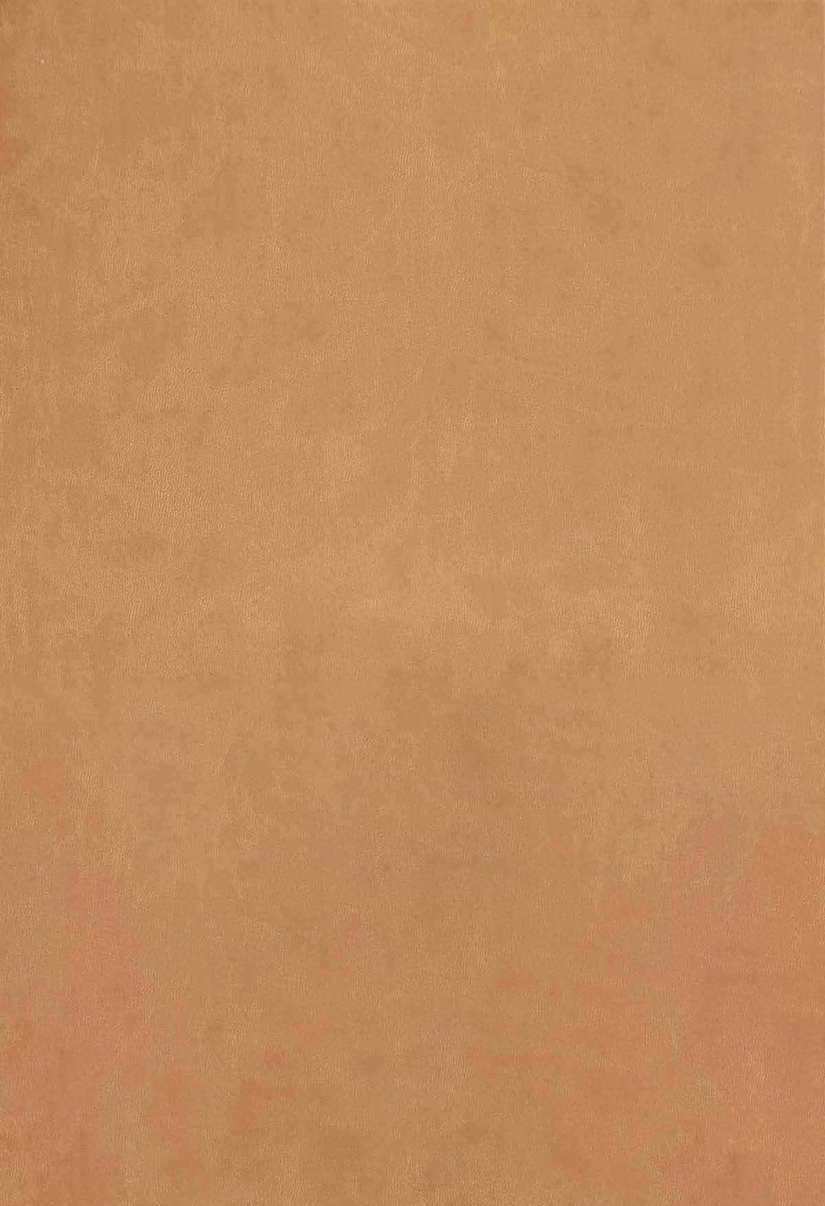 نظریه تلنگر در عمل (طراحی رفتاری در سیاست و بازارها)