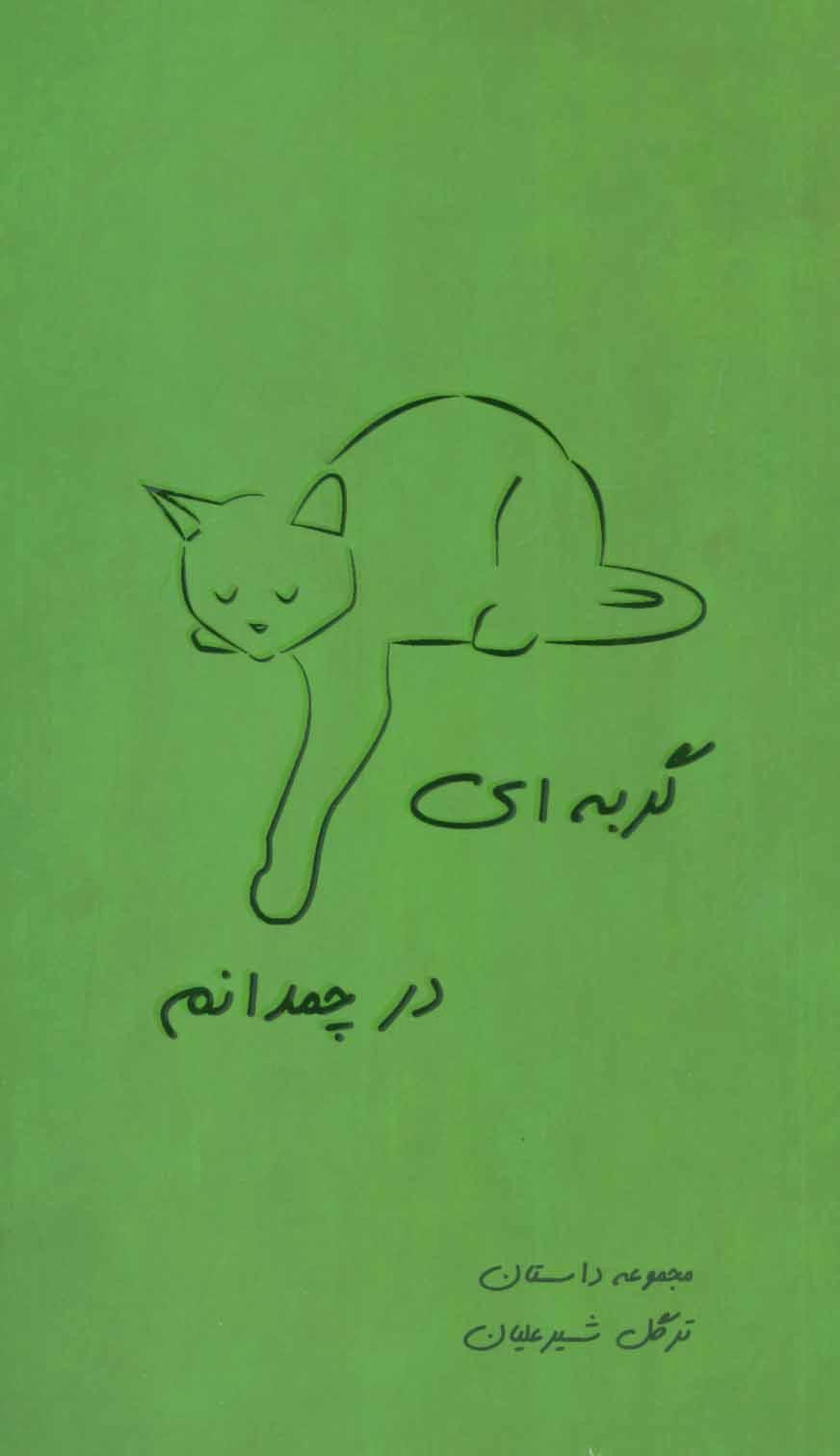 گربه ای در چمدانم (مجموعه داستان)